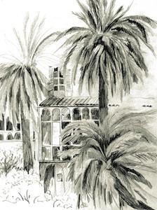 KiS-Galerie-NuernbergSued_Zeichnung_Palma